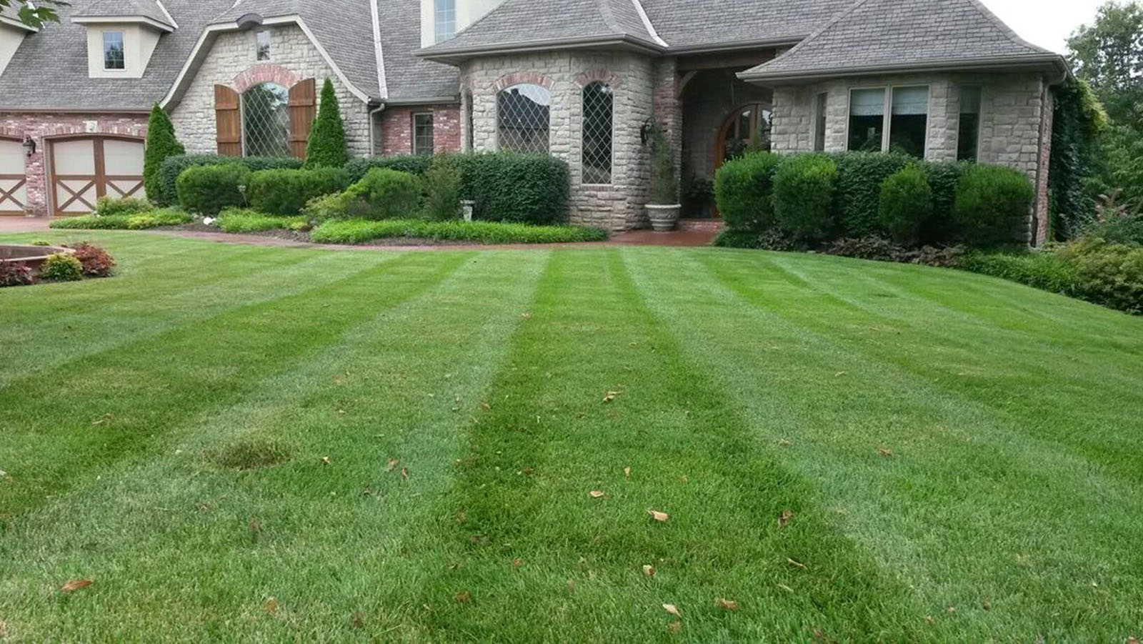 Country Roots Lawn